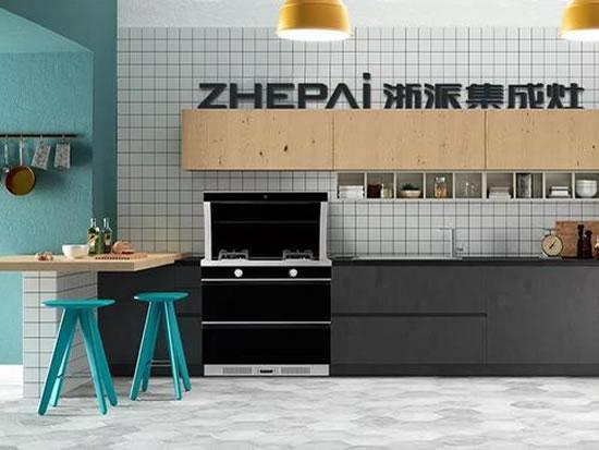 浙派智能整体厨电全国招商